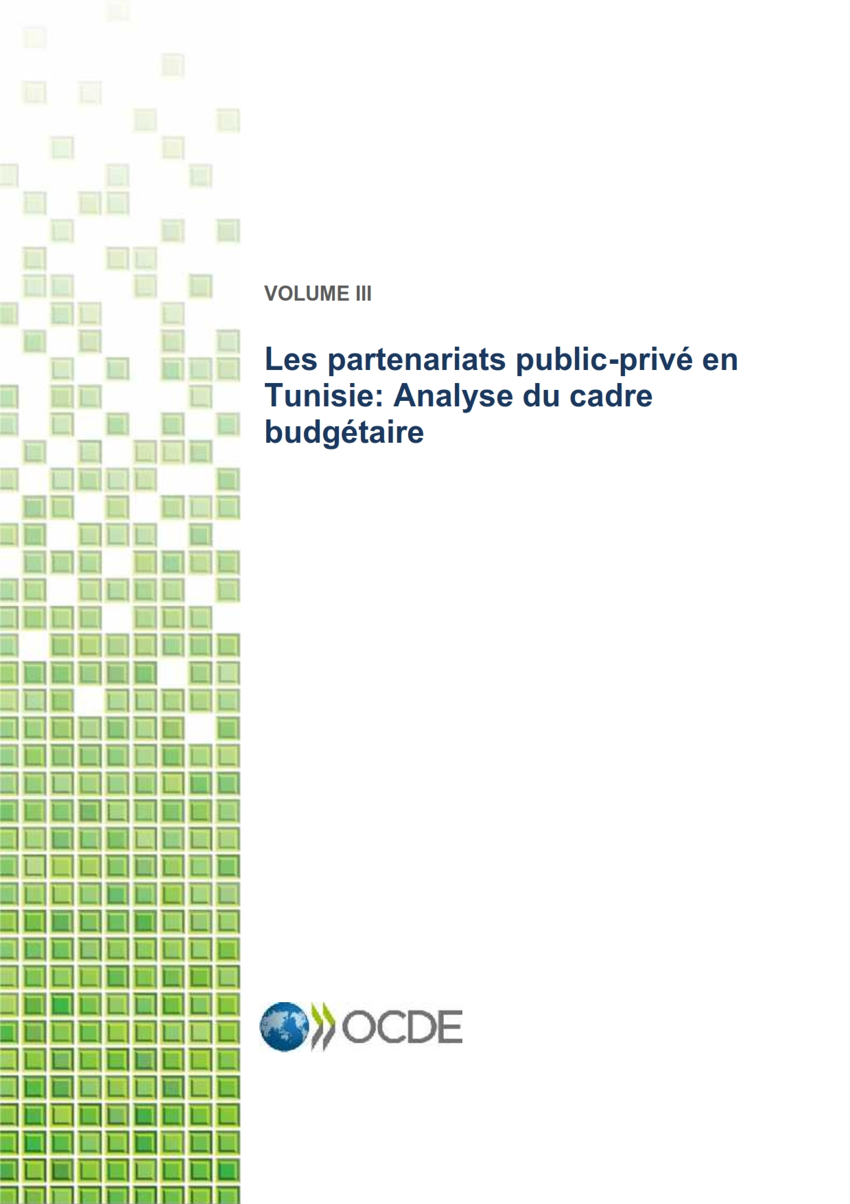 Volume III - Rapport budgétaire PPP